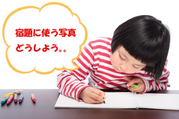 【夏休みの宿題に使う写真はおまかせください!】